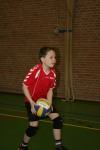volleybal 013